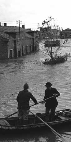 Polesine anno 1951: l'Alluvione.