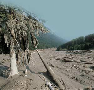 Disastro in Val di Stava